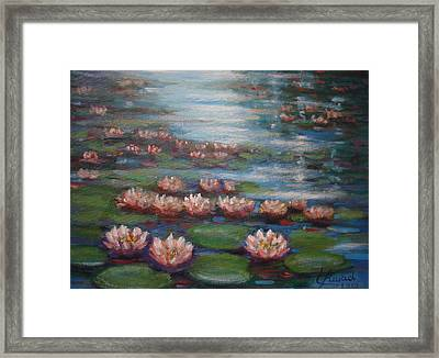 Water Lilies In Monet Garden Framed Print by Laila Awad Jamaleldin