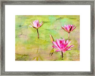 Water Lilies Inspired By Monet Framed Print by Sabrina L Ryan