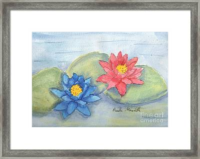 Water   Lillies  Framed Print by Pamela  Meredith