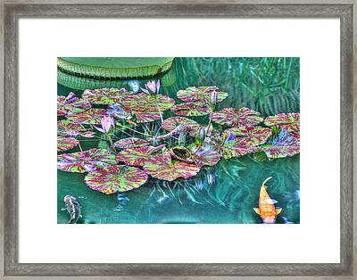Flower 12 Framed Print