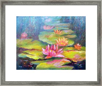 Water Lilly Pond Framed Print by Carolyn Jarvis
