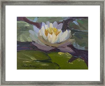 Water Lily 1 Framed Print by Diane McClary