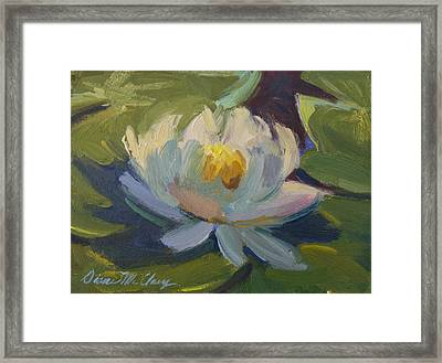 Water Lily 2 Framed Print by Diane McClary