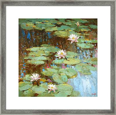Water Lily Framed Print by Dmitry Spiros
