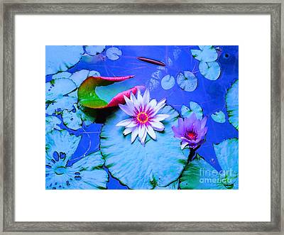 Water Lily I Framed Print