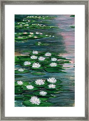 Water Lily Pads Framed Print by Steven Schultz