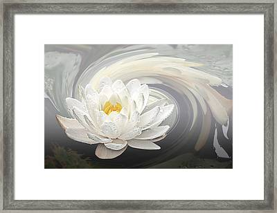Water Lily Whirlpool Framed Print