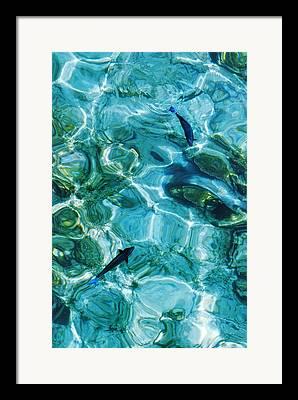 Evgeniya Vlasova Framed Prints