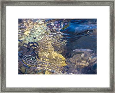 Water Monster Framed Print by Omaste Witkowski
