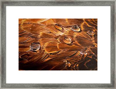 Framed Print featuring the drawing Water Off A Duck's Back by Jessica Tookey