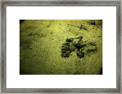 Water Pattern 3 Framed Print