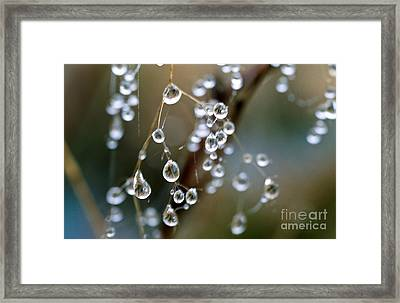 Water Pearls Framed Print by Heiko Koehrer-Wagner
