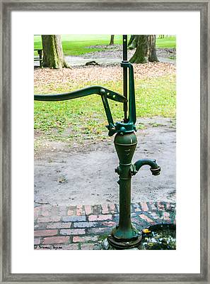 Water Pump  Framed Print by Steven  Taylor