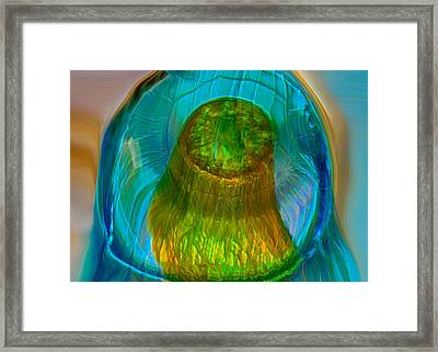 Water Realm Framed Print by Omaste Witkowski