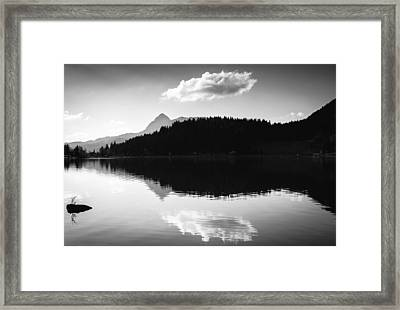Water Reflection Black And White Framed Print