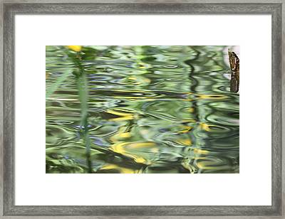 Water Reflection Green And Yellow Framed Print by Dan Sproul