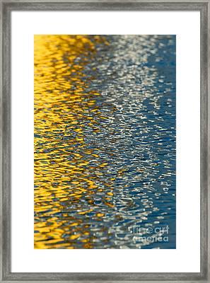 Water Ripples Framed Print by Kelly Morvant
