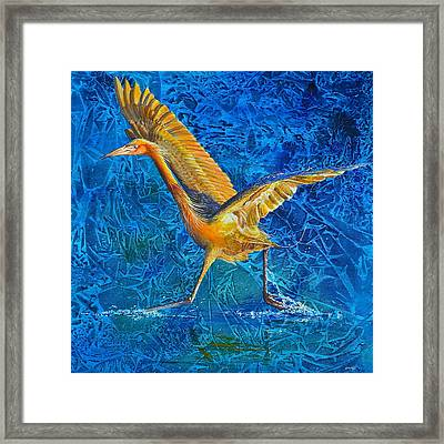 Water Run Framed Print