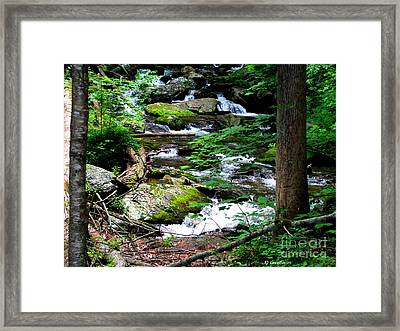Water Shed Framed Print by Greg Patzer