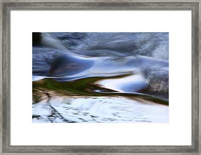 Water Swallow Framed Print by Anna Lozyk Romeo