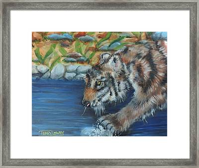 Water Tiger Framed Print by Terry Lewey