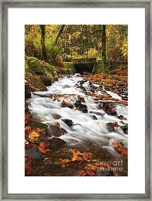 Water Under The Bridge Framed Print by Mike  Dawson