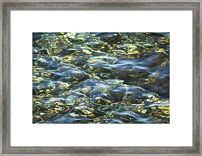 Water World Framed Print by Yulia Kazansky
