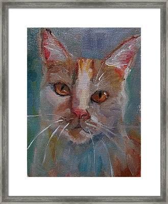 Watercolor Cat Framed Print