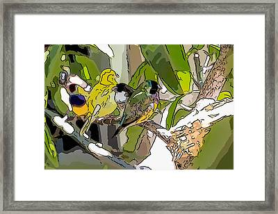 Watercolor Finches  Framed Print