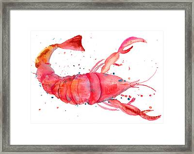 Watercolor Illustration Of Lobster Framed Print by Regina Jershova