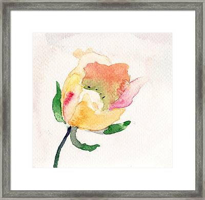 Watercolor Illustration With Beautiful Flower  Framed Print