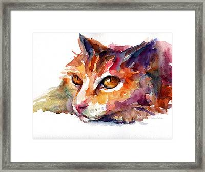 Watercolor Orange Tubby Cat Framed Print by Svetlana Novikova
