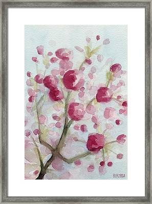 Watercolor Painting Of Pink Cherry Blossoms Framed Print by Beverly Brown