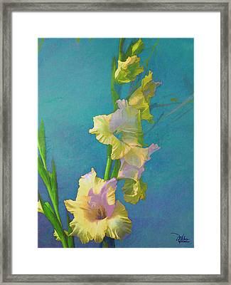 Watercolor Study Of My Garden Gladiolas Framed Print