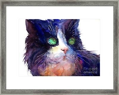 Watercolor Tuxedo Tubby Cat Framed Print