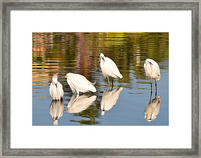 Watercolors In Nature 2 Framed Print by Fraida Gutovich