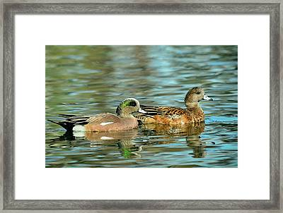 Watercolors In Nature Framed Print by Fraida Gutovich