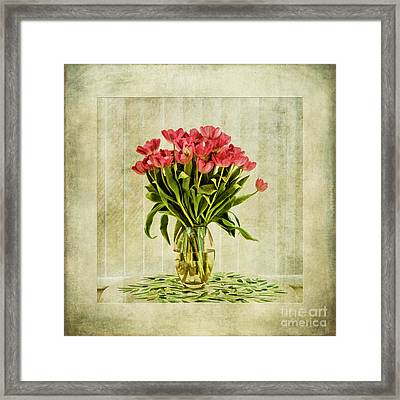 Watercolour Tulips Framed Print by John Edwards
