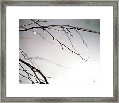 Waterdrops Framed Print