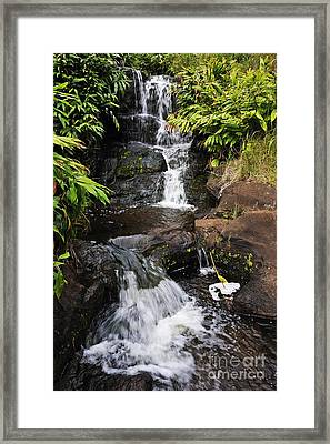 Waterfall And Stream Framed Print by Sami Sarkis