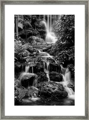 Waterfall At Rainbow Springs Framed Print