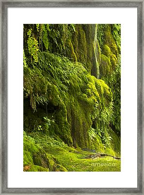 Framed Print featuring the photograph Waterfall In Green by Bryan Keil