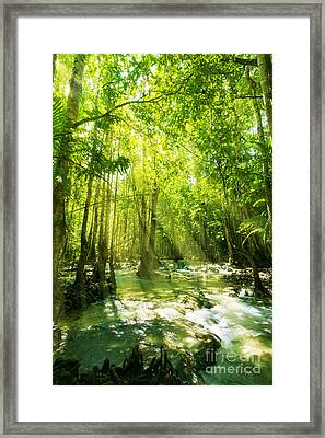 Waterfall In Rainforest Framed Print by Atiketta Sangasaeng