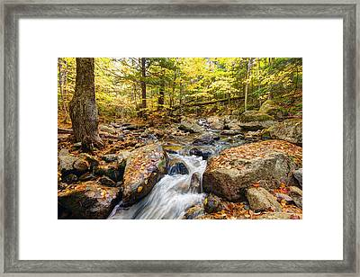 Waterfall In The Fall Nh Framed Print by James Steele