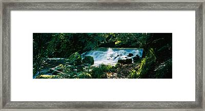 Waterfall In The Forest, Birks O Framed Print
