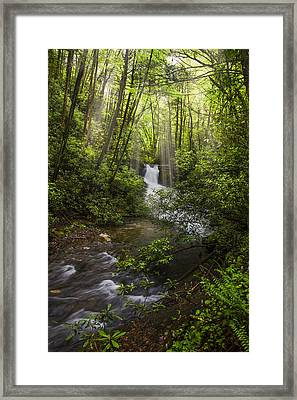 Waterfall In The Forest Framed Print by Debra and Dave Vanderlaan
