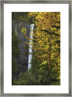 Waterfall In The Light Framed Print
