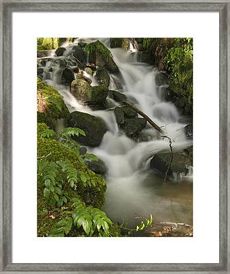 Framed Print featuring the photograph Waterfall Mt Rainier National Park by Bob Noble Photography