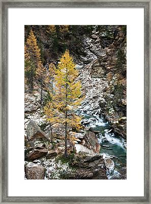 Waterfall Of Creek Plimabach In Valley Framed Print
