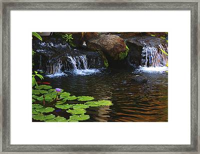 Waterfall On Kanapali Framed Print